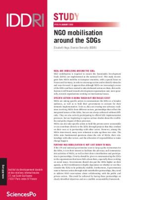 NGO Mobilisation Around the SDGs