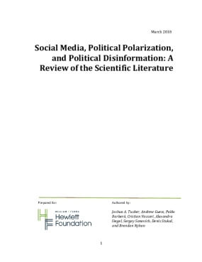 Social Media, Political Polarization, and Political Disinformation: A Review of the Scientific Literature