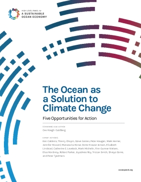 The Ocean as a Solution to Climate Change: Five Opportunities for Action